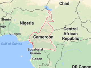 Dozens killed in train crash in Cameroon