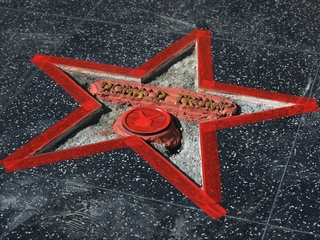 Trump Hollywood star destroyed with sledgehammer
