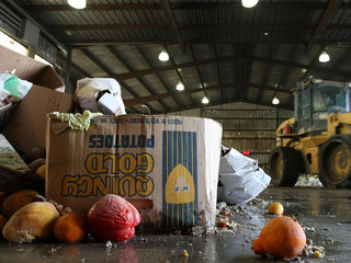 OPINION: Are you throwing away good food?
