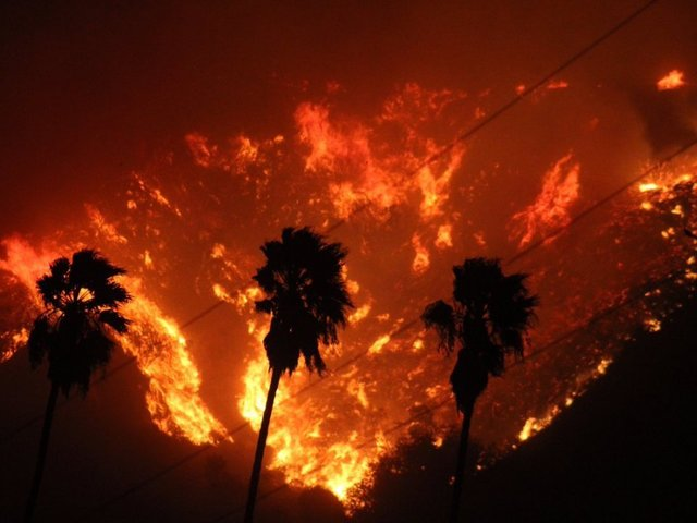 Brush fire breaks out in Los Angeles