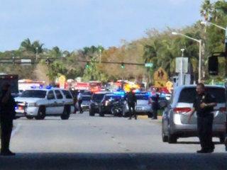 17 dead in Florida school shooting