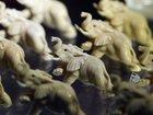 Grace Mugabe investigated for ivory smuggling