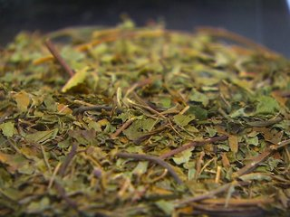 Baby goes into withdrawal because of kratom tea